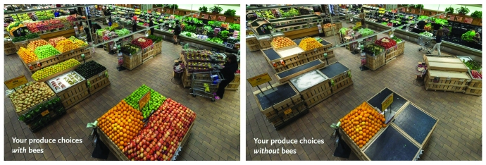 produce and bees
